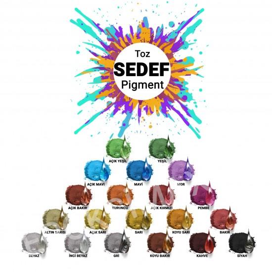 COLORMAX Toz Sedef Pigment Seti 20x10 Gr